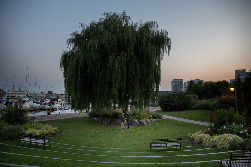 couple stands in front of big willow tree at the center of the toronto music garden